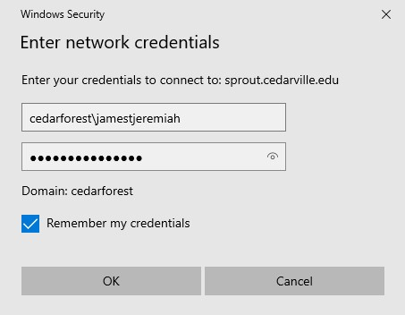 enter your cedarville credentials